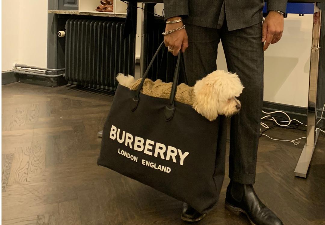 Burberry Doggy Bag